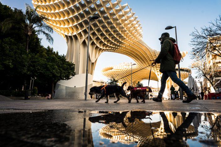 Architecture gem in Sevilla - metropol parasol wooden structure Las Setas